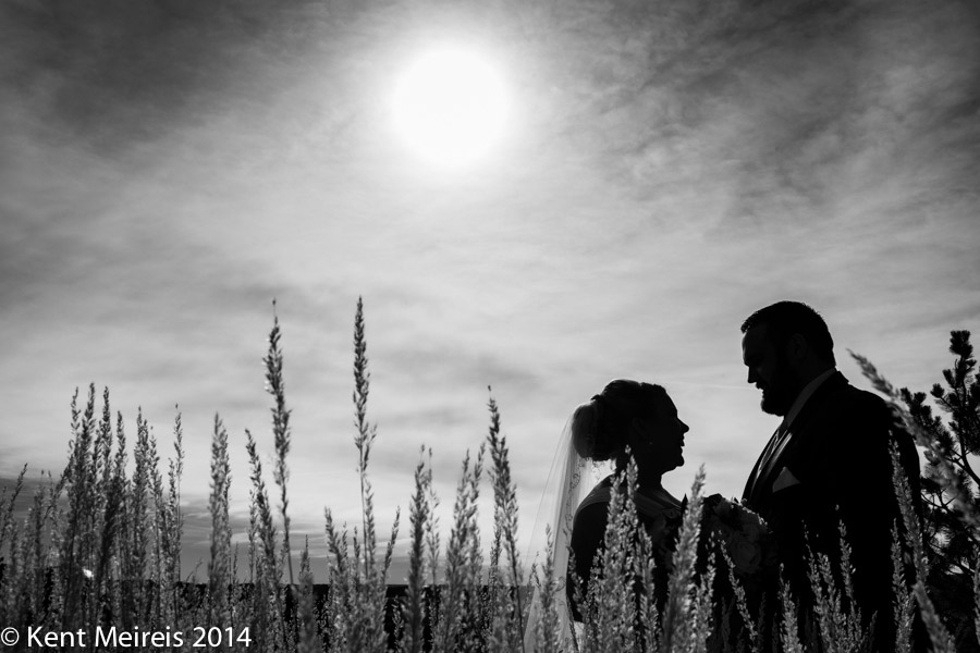 Wedding-Couple-Picture-Portrait-Colorado-Reveal