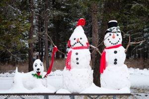 Glacier National Park Government Shutdown Snow Couple Dog