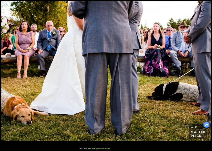 Award Winning Montana Wedding Photographer