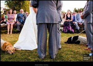 Award Winning Montana Wedding Photographer
